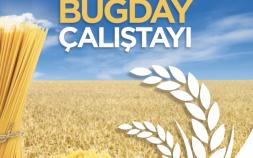Makarnalık Buğday Çalıştayı 21-23 Eylül 2017 Tarihleri arasında Gaziantep Divan Otel'de gerçekleştirilecek.