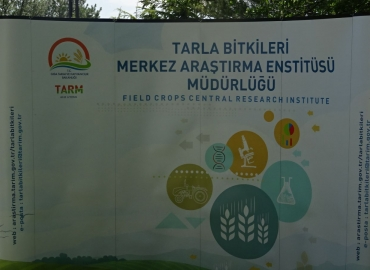 TMSD olarak Tarla Bitkileri Merkez Araştırma Enstitüsü Müdürlüğünün Tarla Günü etkinlikleri davetine katılım sağladık.